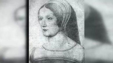 Photo of «Бретонская роза» Франциска I Мадам де Шатобриан