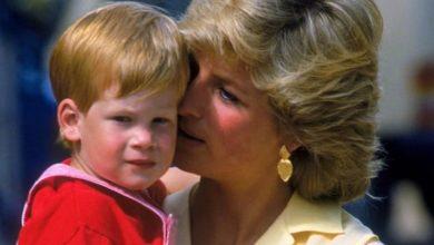 Photo of Меган и Гарри: реальная история. Глава 2, часть 8: синдром второго сына